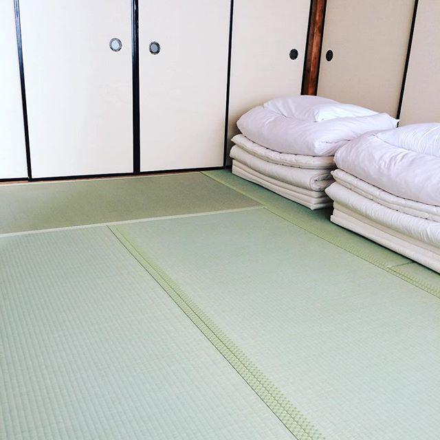和室ドミトリーの畳を新調!!明るい!! #奈良 #ウガヤゲストハウス #い草の香り #気持ちいい