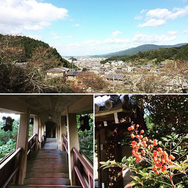 聖林寺(しょうりんじ)詳しくは、アメブロ『奈良のおすすめブログ』にて。プロフィールのリンクからご覧下さい #奈良 #奈良が好き #聖林寺 #十一面観音 #マンダラ #南天